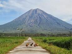 Wisata Jawa Timur Gunung Semeru Anekatempatwisata