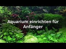Aquarium Einrichten Schritt F 252 R Schritt Erkl 228 Rt
