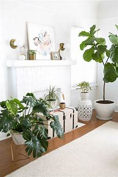 Living Room Home Decor Ideas With Plants by California Bohemian Living Room Major Housegoals A B O