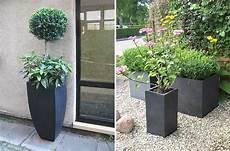 Pflanzkübel Modern Bepflanzen - tipps f 252 r die gartengestaltung mit pflanzk 252 beln