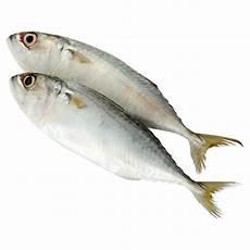 Ikan Kembong Temenung Tesco Groceries