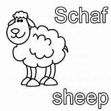 kostenlose malvorlage englisch lernen schaf sheep zum