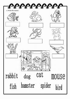 animal worksheets doc 13833 you got a pet interactive worksheet