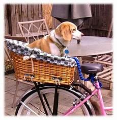Dogs On Bikes Bike Basket Biking With Carrier