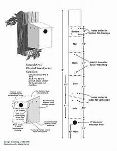 screech owl house plans pdf plans pileated woodpecker bird house plans download