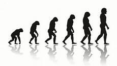 die evolution des menschen turkey cracks on darwin excludes evolution theory in