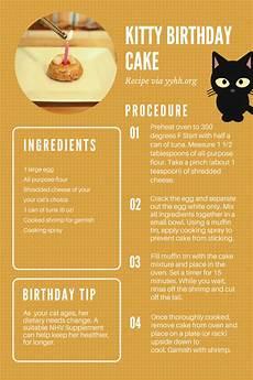 10 tipps zur top 10 tipps zur gesundheit 228 lterer katzen f 252 r ihre