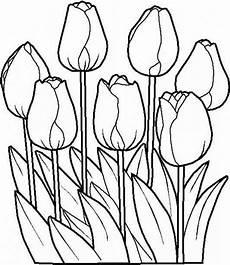 Malvorlagen Blumen Kostenlos Ausdrucken Ausmalbilder Blumen Kostenlos Malvorlagen Zum Ausdrucken