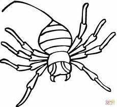 spider 13 coloring page free printable coloring pages