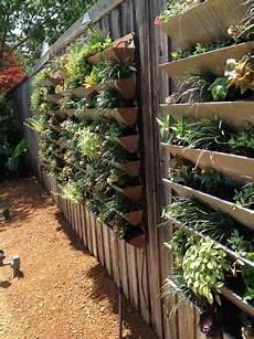 Blumenkästen Für Die Wand - ideen und tipps einen vertikalen garten anzulegen