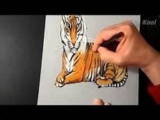 Cara Membuat Gambar Harimau 3 Dimensi Menggunakan Pensil