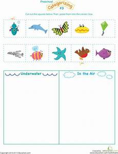 water animals worksheets for kindergarten 14080 cut and categorize 3 sorting activities the sky and preschool worksheets