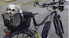 How To Carry Your Safely On Your Bike In A Pet Bike