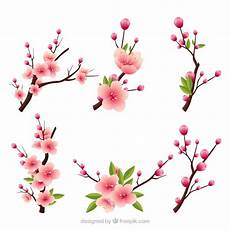 several blooming branches in realistic style vector free