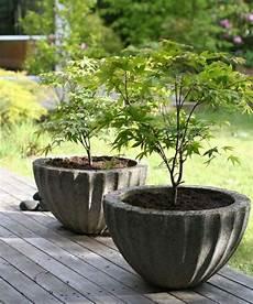 Beton Ideen Für Den Garten - sch 246 ner runder pflanzk 252 bel aus beton f 252 r den japanischen