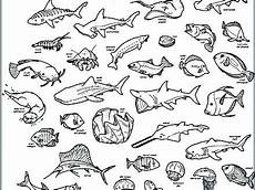 water animals printable coloring pages 17265 coloring pages of the animal coloring pages coloring pages printable ani
