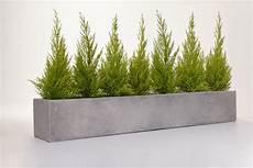 Blumenkasten 100 Cm - blumenkasten pflanzkasten fiberglas beton design quot flobo