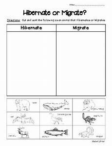 animal migration esl worksheets 14297 hibernate or migrate science sorting worksheet w picture cards tpt