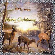 merry christmas deer and owls picture 135573136 blingee com