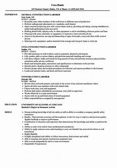 10 strong resume objective exles payment format