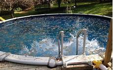 Pool Care For Dummies Guide To Cleaning And Maintaining