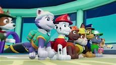 Psi Patrol Rusza Do Akcji Trailer