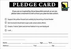 pledge search card template pledge labels