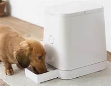 achat croquette chien en gros meilleurs distributeurs de croquettes pour chien guide