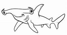 Gambar Animasi Hewan Ikan Hiu Gambar Animasi Keren