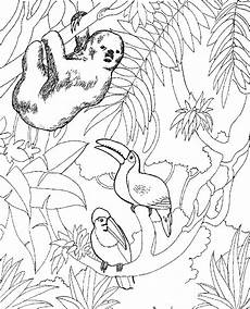 coloring pages of animals 17199 free printable zoo coloring pages for