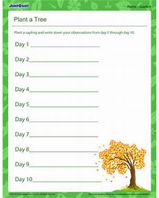 science worksheets on plants for grade 4 13724 plant a tree free printable plant worksheet for grade 4 jumpstart