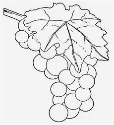 Dunia Sekolah Gambar Hitam Putih Drawing Buah Sayuran