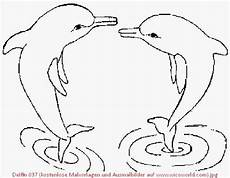 delphin zum ausmalen neu 24 einfach malvorlage delphin zum