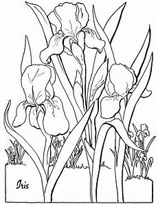 free coloring pages for adults 16671 free floral coloring page the graphics