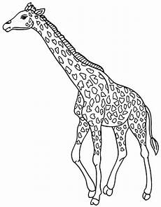 print giraffe coloring pages for to