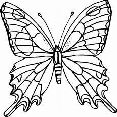 Insekten Ausmalbild Kostenlos N De 16 Ausmalbilder Insekten