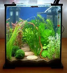 I M Thinking In The Guest Room Tank I Can Do This On Each