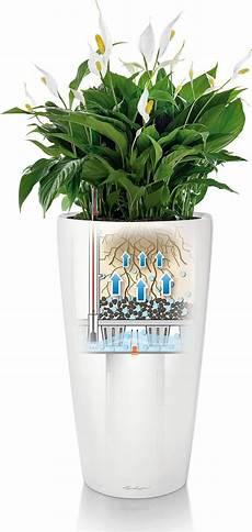 lechuza planter rondo premium 40 interismo uk