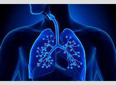 Hospital Acquired Pneumonia Guidelines 2016-Hospital Pneumonia Treatment Guidelines