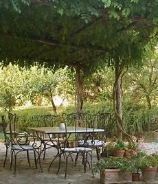 plantes grimpantes pour pergola 20 id 233 es romantiques