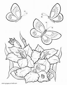 butterfly flying drawing at getdrawings free