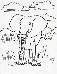 elephant coloring page starts for