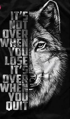 Lone Wolf Quotes Hd Wallpaper wolf quotes wallpapers wallpaper cave
