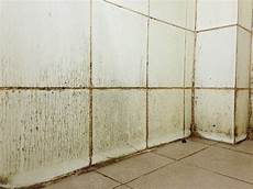 moisissure mur salle de bain moisissures dans la salle de bain comment les emp 234 cher