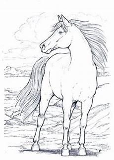 Ausmalbilder Vorlagen Pferde Die 108 Besten Bilder Ausmalbilder Coloring Pages