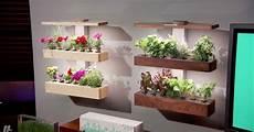 beautiful smart indoor gardens pitched shark tank edn wallgarden huffpost