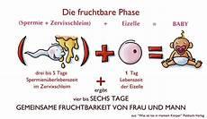 zyklus und fruchtbarkeit mfm deutschland e v