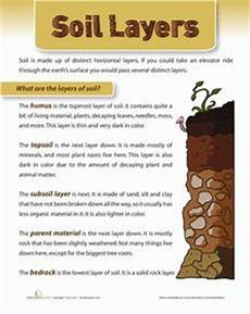 plants and soil worksheets 13633 1000 images about grade 3 soils and plants on photosynthesis parts of a plant and