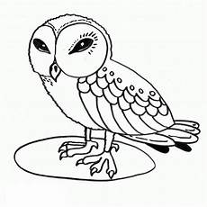 Gratis Malvorlagen Eulen Free Printable Owl Coloring Pages For