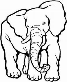 Kostenlose Malvorlagen Tiere Silhouette Zeichnen Und Malen Bild Brunner Malvorlagen